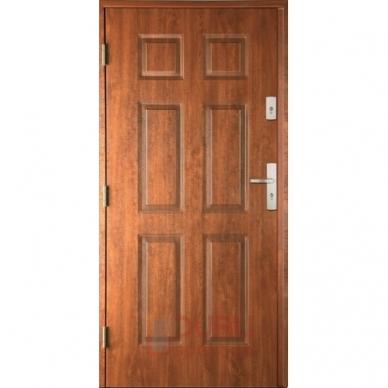 Lauko durys 4+2 Įspaudai T6NL